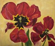 To tulipaner, 61x51