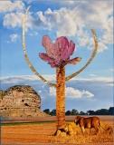 Det hellige træ, 19x24